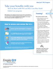 Bluecard Worldwide Flyer